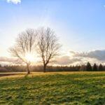 Acheter un terrain à bâtir et les procédures